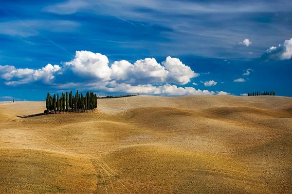 Toscana: sulla strada del vino e dell'olio nella Costa degli... OF OSSERVATORIO FINANZIARIO