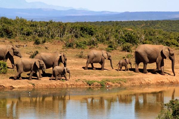 Africa da scoprire: le località da visitare nel 2017 secondo... OF OSSERVATORIO FINANZIARIO